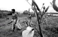 Perú: Un indígena muerto y 6 heridos en toma de petrolera